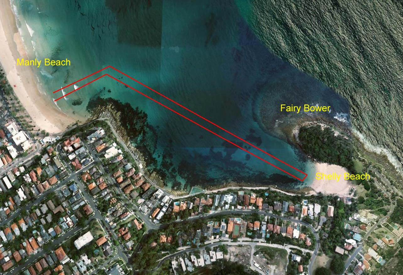 Only 1.5km but it's one of the world's great swims. Manly to Shelly and return with the Bold + Beautiful group became a big part of my daily exercise routine through the winter of 2015